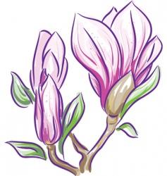 magnolia branch vector image vector image