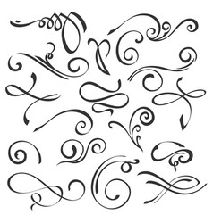 calligraphic swirls element set vector image
