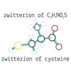 C3H7NO2S zwitterion of cysteine amino acid vector image vector image