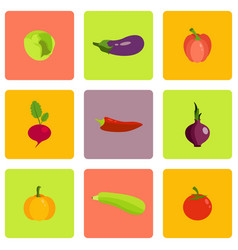 different food icons vector image