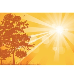 yellow summer background with rays vector image