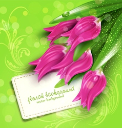background with tulips vector image