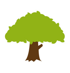 Flat color banyan tree icon vector