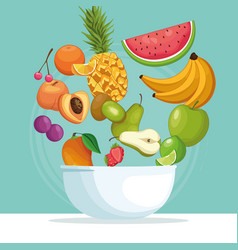 Fruit bowl icon vector