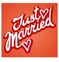 just married sign vector image