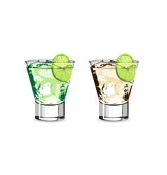 lime water vector image