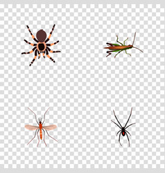 Set of insect realistic symbols with grasshopper vector