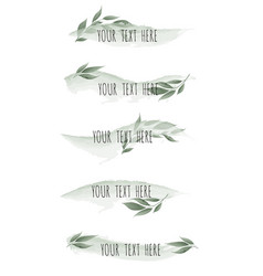 set of watercolor brush lines with leaves vector image