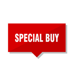 special buy red tag vector image