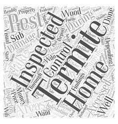 Termite Inspection Word Cloud Concept vector image