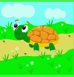 turtle in the meadow vector image