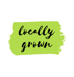 locally grown logo or sign vector image vector image