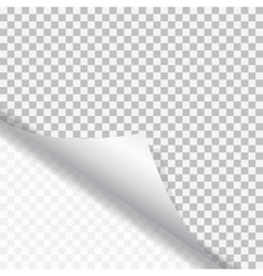 Page curl with shadow vector image