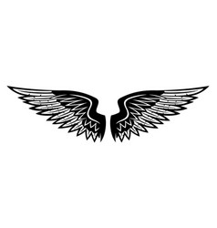 Black wings on white background vector