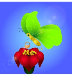 Butterfly with Brugmansia vector image