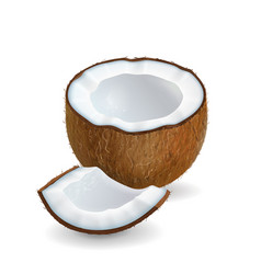 Coconut pieces realistic isolated vector