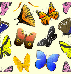 Colorful different butterfly wings seamless vector