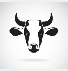 Cow head design on white background wild vector