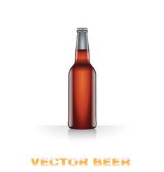 Dark beer bottle vector