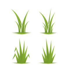 grass leaf nature leaf design green garden field vector image