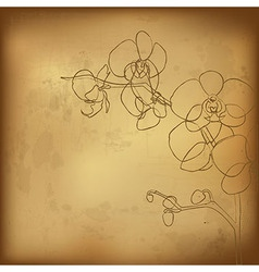 Orchid And Old Paper vector
