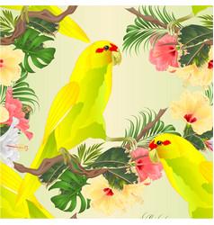 Seamless texture bird indian ringneck parrot vector