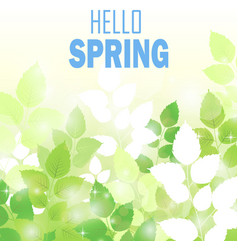 Spring background with fresh green leaves vector