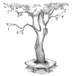 Tree and a wooden bench around it vector
