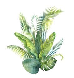Watercolor bouquet tropical leaves vector