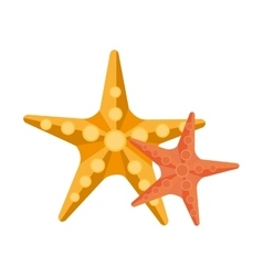 yellow and orange starfish graphic vector image