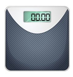 A bathroom scale vector image vector image