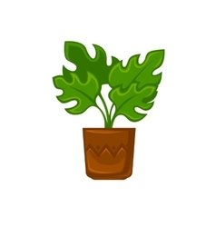 Pot plant with flower and leave vector image vector image