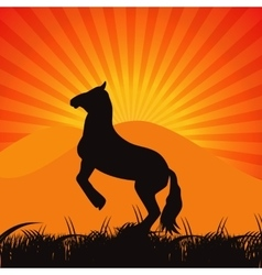 Black Horse Silhouette vector image