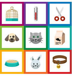 flat icon pets set of feeding puppy hound vector image