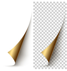 Golden foil vertical paper corner rolled up vector