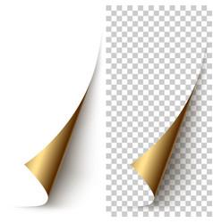 Golden foil vertical paper corner rolled up vector