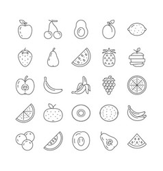 simple set fruits line icons vector image
