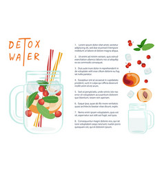 detox water with fruits vector image