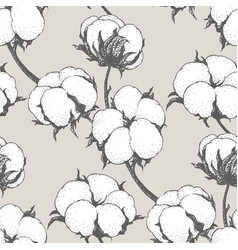 Seamless pattern with cotton plants vector