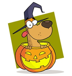 Cartoon Character Halloween Dog vector