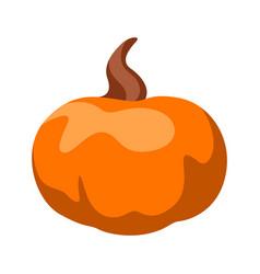 cartoon ripe pumpkin vector image