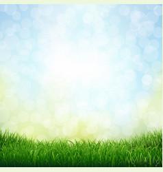 Grass with bokeh vector