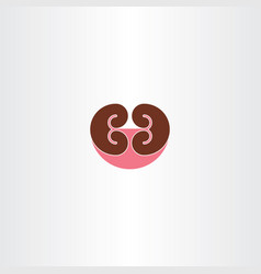 kidney symbol vector image