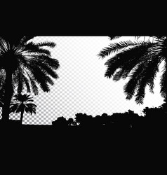 Palm trees silhouette coconut tree vector