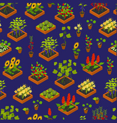 plant seedling and elements background pattern vector image