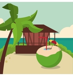 Summer and paradisiac island design vector image