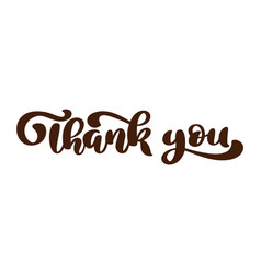 thank you hand drawn text phrase lettering word vector image