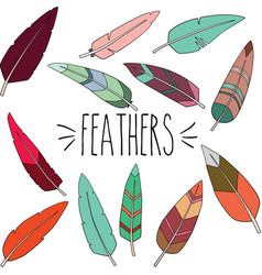 colorful outline feathers vector image