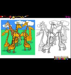 giraffes animal characters coloring book vector image