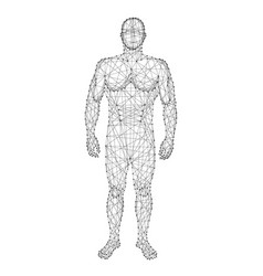 human body from abstract futuristic polygonal vector image